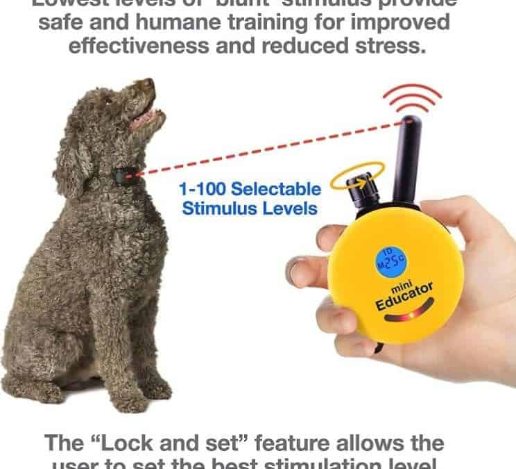ET-300 Mini 1/2 mile Educator ecollar Remote Dog Trainer