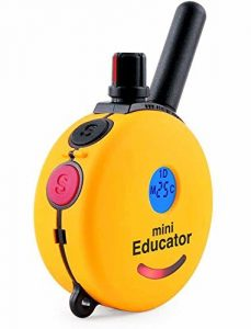 mini educator dog -training-collar